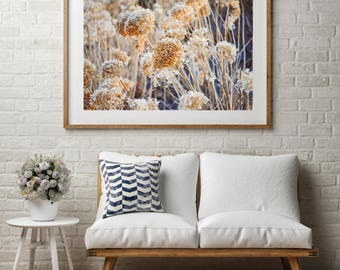 """Landscape Winter Photography, Matted Fall Photo, Nature Photography, Farmhouse Fall Art, Flower Winter Photography, """"Spring Awakening"""""""