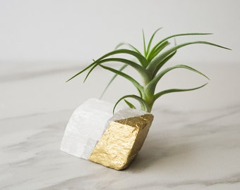 Crystal air plants desk accessories birthday gifts by