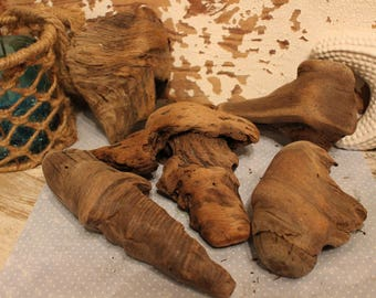 5 driftwood knots from Northern California and the Pacific Ocean Wood Carving Beach Decor Whittling Knot Blow-out! C
