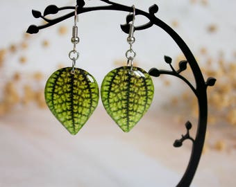 Green Resin Leaf - Leaf Earring - Leaves Earrings - Print Jewelry - For Nature Lovers - Nature Inspired