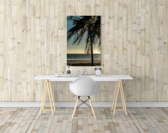 Palm Tree Print, Palm Tree Wall Art, Palm Tree Photo, Palm Tree Decor, Photography Print, Extra Large Wall Art, Huge Canvas Art