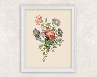 Aster Flowers Botanical Art Print in Pink and Blue - 8x10 Flower Art Print - Item #128