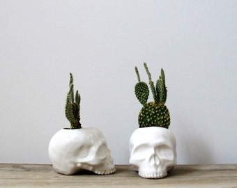 Ceramic Skull Planter Halloween Home Decor