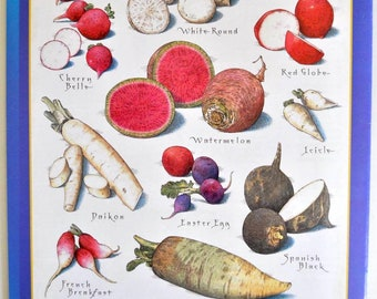 Original Print Radishes Back Cover Cook's Illustrated