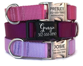 Personalized Dog Collar with Engraved Buckle - Nylon Webbing Dog Collar with Engraved Pet ID