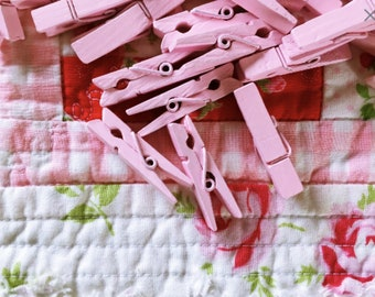 Mini Clothespins/ 125 Pink Wooden Pegs/ Free Shipping