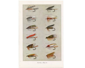 c. 1963 - WET FLIES - fly fishing lithograph - original vintage print - fresh water fishing angling - trout salmon bass bait - fly tying