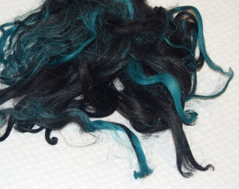 Karakul Wool Locks, Locks for Spinning, Felting Fiber, Doll Hair, Doll Wig, Black Hair, with Hand Dyed shades of Teal Highlights 1 oz.