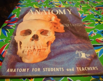 """Vintage Walter Foster """"How To"""" art book-  Anatomy"""