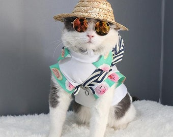 Sunglasses for pet , Pet Accessories , Cat costume