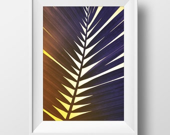 Printable Photography, Minimal Photograph PRINTABLE, palm leaves, 11.7 x 16.5 in. black and white with soft sunlight tones, Palm print