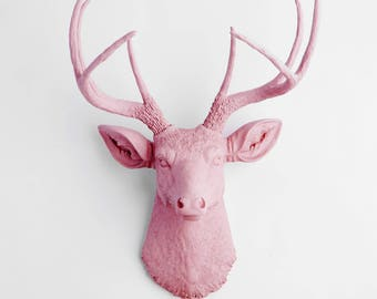 Faux Deer Head - The Maya - Lilac Resin Deer Head- Deer Antlers Decor - Faux Head Wall Mount by White Faux Taxidermy