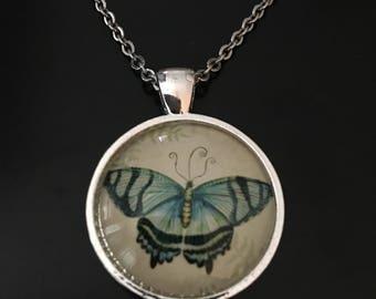 Butterfly Necklace, Light Blue Butterfly