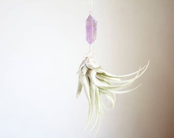 Hanging Planter for Air Plants, Airplant Hanger, Small Size, Crystal Planter, Little Something, Amethyst, Boho Crystal Decor