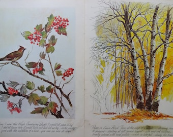 Vintage Color in Trees, Shrubs, Weeds Walter T. Foster Art Book 1960s