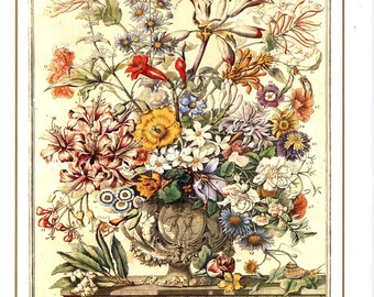 "October Flowers Art Print -12 MONTHS of FLOWERS- 1700s Botanical Illustration- Winterthur Floral Arrangement- Wedding gift idea - 7.75 x 10"""
