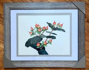 Watercolor original painting, framed painting, framed watercolor, nature painting, original art, original painting, botanical art