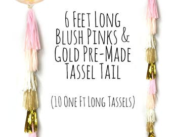 Balloon Tassels Tail in Blush Pink, Peach and Gold Tassel Garland, Tissue Tassels, Photo Prop, Party Decoration, Wall Decor, Birthday Decor
