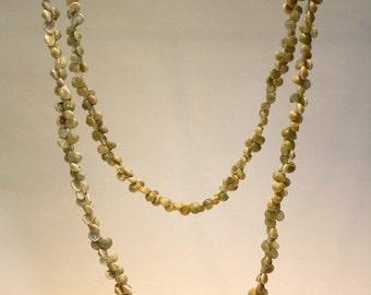 Tiny shells necklace
