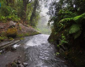 Costa Rica rainforest waterfall nature - Fine art photography print wall hanging gift