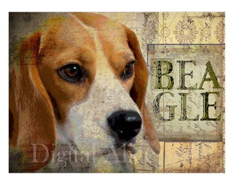 Dog Lovers Art - BEAGLE HOUND DOG - Cute Beagle Vintage Look Contemporary Art Print Poster - Artist signed - 3 sizes - customizable