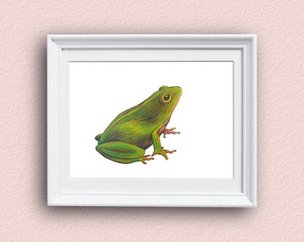Frog Wall Art - Green - Frog Art - Giclee Art Print
