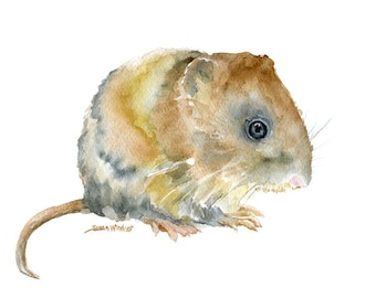Vole Watercolor Painting - 5 x 7 - Giclee Print - Woodland Animal - Nursery Art