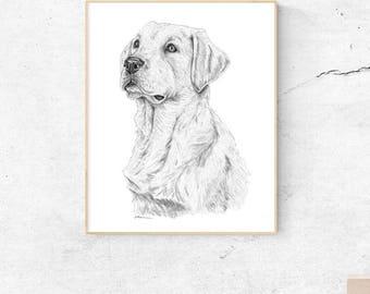 Labrador Retriever, Lab Art, Labrador Art. Yellow Lab. Lab Dog Art, Yellow Labrador, Dog Print, Lab Art, Labrador Gifts, Labrador Wall Art