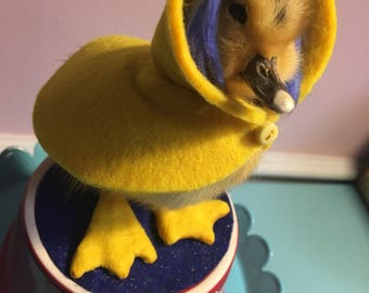 Custom Coraline Taxidermy Duckling, Rogue, OOAK, Felt Miniature