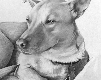 Custom Portraits Drawings // Hand Drawn // Pet Portraits // Family Portraits