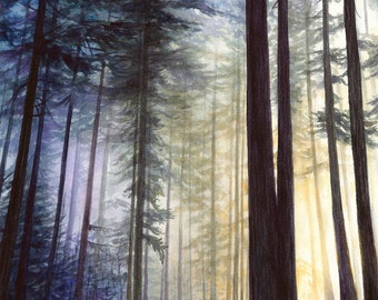 Print - Northwest sunrise watercolor, forest sunrise, woodland, pnw art, Jacqueline Tribble, Pacific Northwest Print, watercolor nature