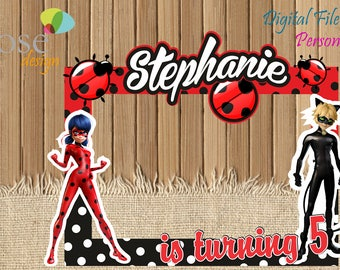 Miraculous Ladybug Photo Booth / Miraculous Ladybug Party / Birthday Backdrops / Birthday Photo Booths / Ladybug Super Cat / Selfie Frame
