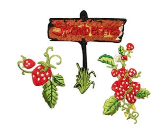 ID 1185ABC Set of 3 Strawberry Batch Patches Fruit Embroidered Iron On Applique