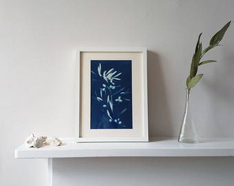 Wall Leaf & Art Flower Print, Handmade Botanical Cyanotype Wall Print, Olive Branches