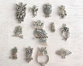 15 Bulk Owl Charms,Random,Antique Silver Charm,Pendant,Jewelry Making,Turtle Charms,Random Charms, Lot #42