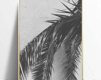 Black and White Palmtree wall art, digital download, instant download, printable wall art, palmtree decor