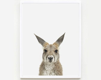 Baby Animal Nursery Art Print. Baby Kangaroo Little Darling. Animal Wall Art. Animal Nursery Decor. Baby Animal Photo.