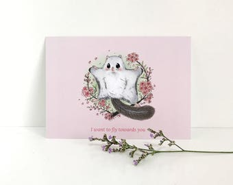 Flying Squirrel Postcard - I want to fly towards you