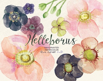 Watercolor flowers, hand painted hellebore, wedding flowers, florals, clip art, invite, diy invitation, party stationery, instant download