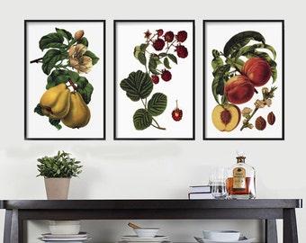 Botanical Print set - Kitchen -  Kitchen Decor - Wall Art Print - Farmhouse Decor - Wall Hanging - Botanical Illustration - Rustic Decor