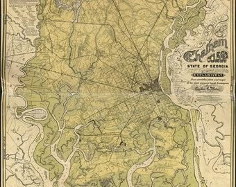 Poster, Many Sizes Available; Map Of Chatham County, Georgia 1875