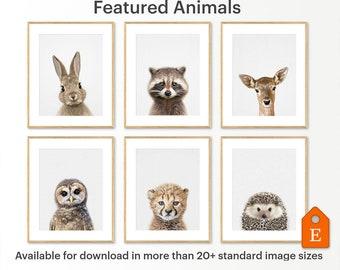 Baby Animal Prints, Nursery Animals, Nursery Animal Print, Baby Animal Wall Art, Printable Nursery, Set of 6 Print, Set of  Six Print