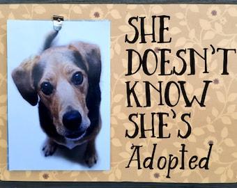 Rescue dog frame, dog rescue, pet lover frame, Dog picture frame, frame for dog picture, pet frame, dog frame, dog sign, dog photo frame,