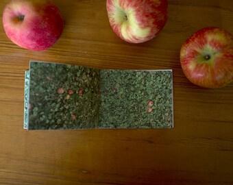 Fallen Apples Photo Zine