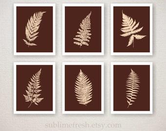 Botanical Fern Prints Home Garden Decor, Set of 6 (choose your own colors)