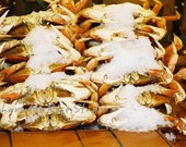Fishermans Wharf Crabs...