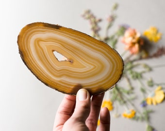 """Natural Amber Agate Slice 6"""" Oval"""