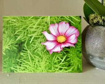 Electric Pink Greeting Card
