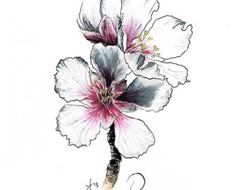 "Original Almond Flower Watercolor ""Matra Flora"" Print"
