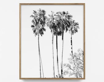bw palm tree print, palm tree horizon print, tropical horizon, botanical print, palm tree art, palm tree wall art, tropical decor, palm art